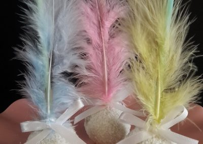 Cake Pops with Feathers