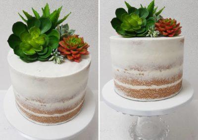 Semi-Naked Succulent Cake